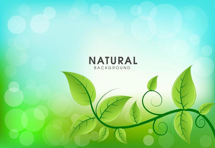 Ecologie achtergrond met groene bladeren vector