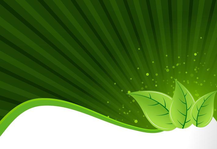 Flyer achtergrond met groene bladeren vector