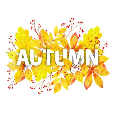 Aquarel herfst typografie met bladeren Frame vector