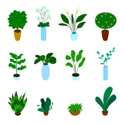 Isometrische vector set potplanten