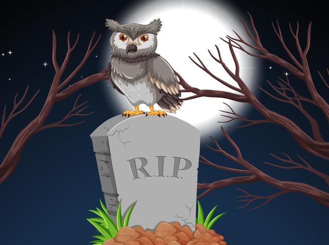 Een uil op grafsteen in de nacht vector