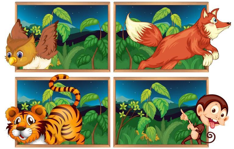 Vier bosgezichten met wilde dieren vector