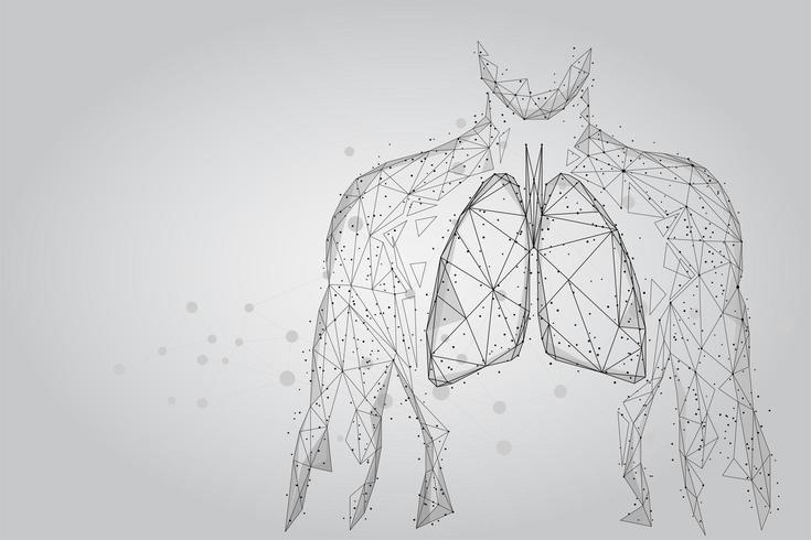 Man silhouet gezonde longen verbonden stippen vector