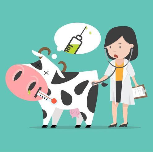 Zieke koe met de dokter vector