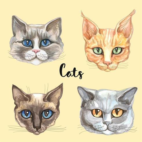 Gezichten van katten van verschillende rassen. Waterverf vector