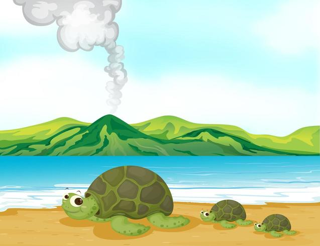 Een vulkaanstrand en schildpadden vector