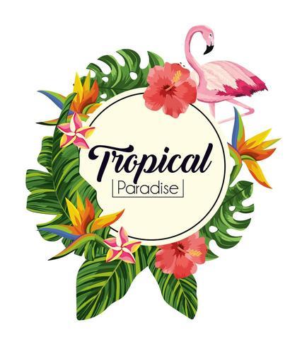 label met tropische bloemen met exotische bladeren vector