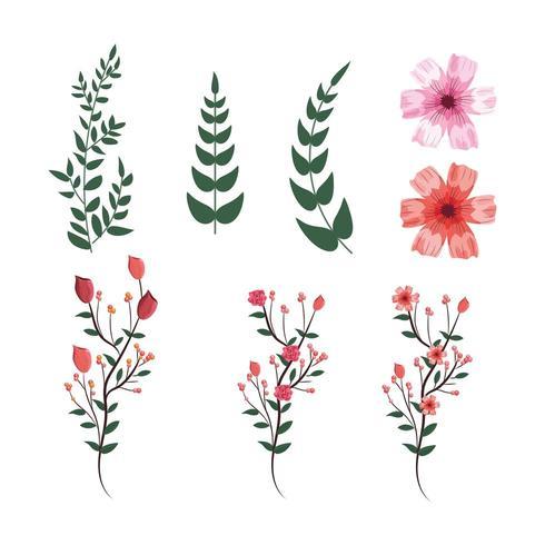 set tropische bloemen met exotische takken bladeren planten vector