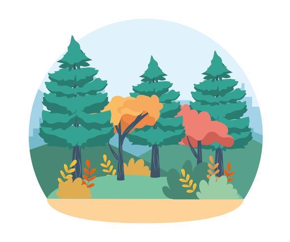 bomen en dennen met takken bladeren en struiken vector