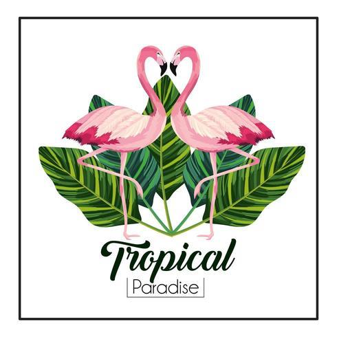 tropisch flamingo'spaar met bladereninstallaties vector