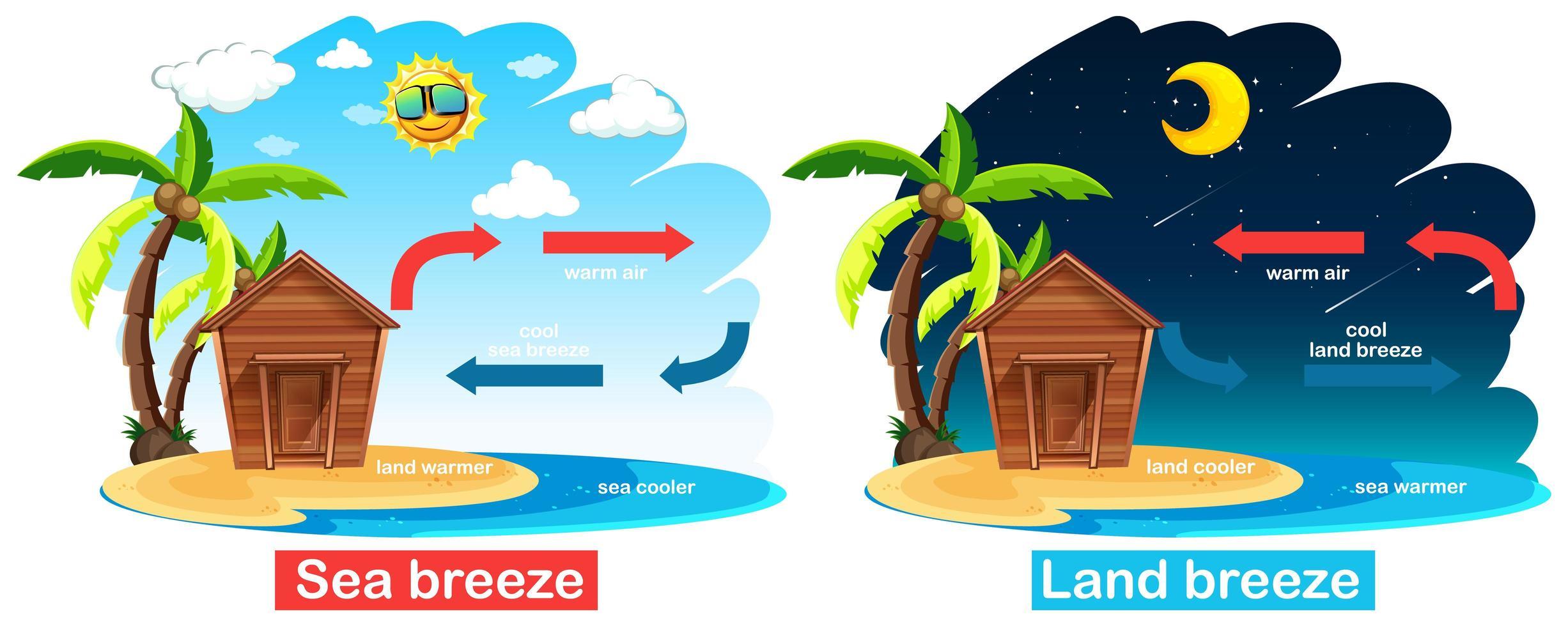 diagram met circulatie van zee- en landbries vector