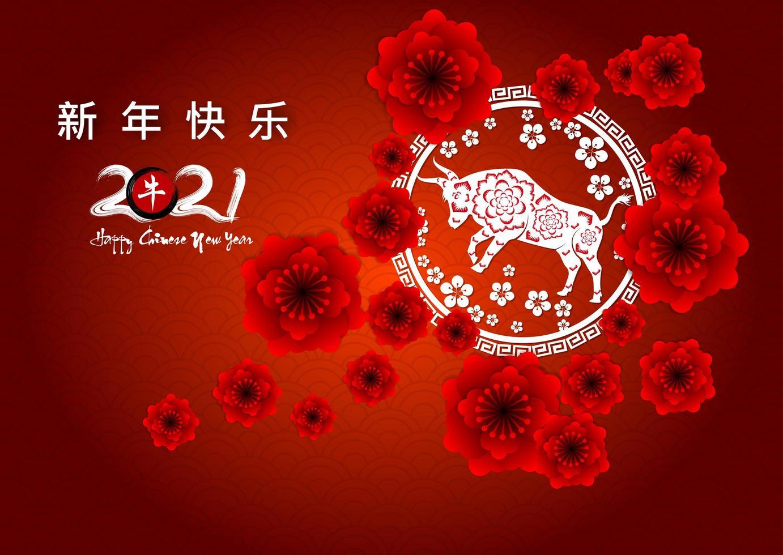 Chinees Nieuwjaar rode bloemen poster vector