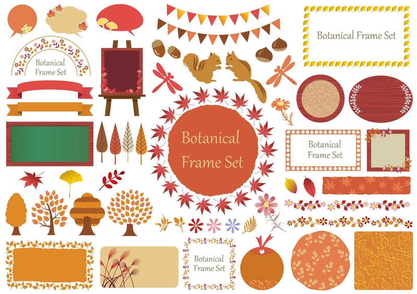 set herfst botanische grafische elementen vector