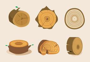 Boom Ringen Textuur Vector