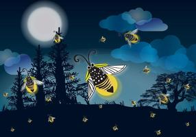 Vuurvlieg nachten vector