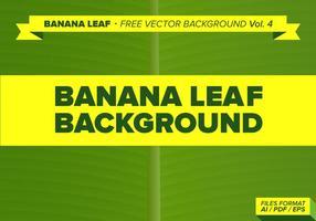 Banaan Blad Gratis Vector Achtergrond Vol. 3