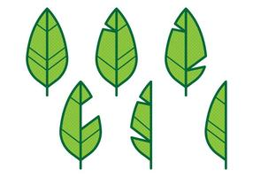 Banaan blad icoon vector