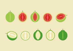 Gratis Guave Vector