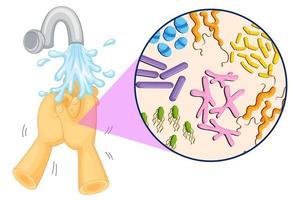 bacteriën in menselijke handen