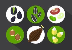 Cacaobonen Vectorillustratie vector
