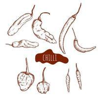 chili peper hand getekende set