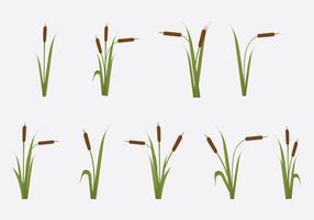 Gratis Reeds Vector Illustratie