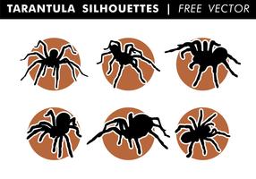Tarantula Silhouetten Gratis Vector
