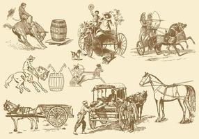 Paard vrije tijd en vervoer vector