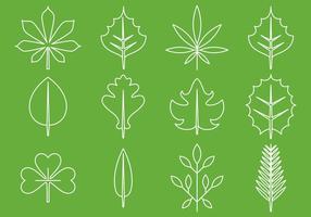 Bladeren Lijnpictogrammen vector
