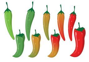 Rode Hete Chili Met Groene Gebogen Stengel vector