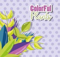 kleurrijke planten ontwerpen op lila achtergrond