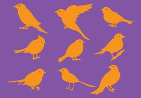 Oranje Vogel Silhouet Pictogrammen Vector