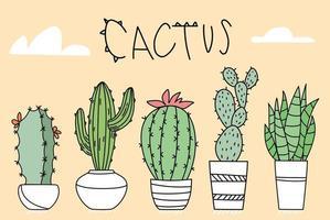 set van cactus in potten van verschillende vormen