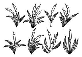 Zwart-witte Cattails Pictogram Vector