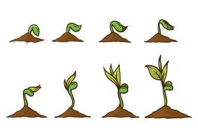 Gratis Grow Up Plant Vector