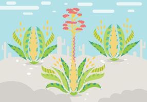 Maguey Illustratie Vector