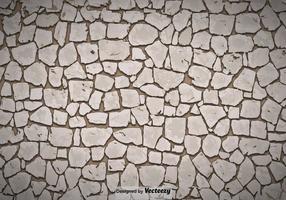 Vector Stenen Pad Textuur