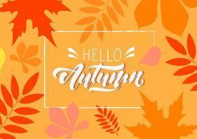 Hallo herfst op herfst achtergrond vector