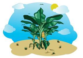 Gratis Bananenboom Illustratie vector