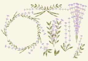 Vector Waterverf Lavendel
