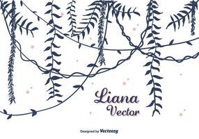 Hand getekende Liana Vector
