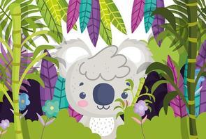 schattige koala in bamboe vector