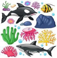 set van zeedieren op witte achtergrond