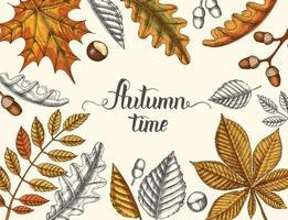 schattige herfst tijd kalligrafie letters met vintage bladeren vector