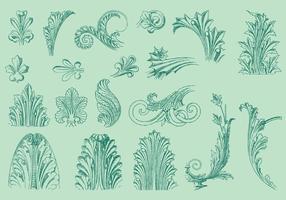 Dunne lijn acanthus decor vector