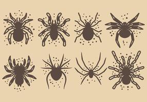 Gratis Tarantula Pictogrammen Vector