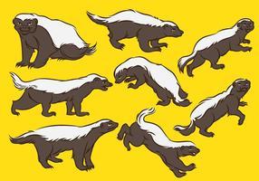 Honing Badger Cartoon