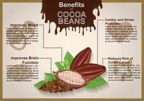 Gratis Cacao Bean Illustratie vector