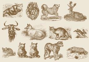 Sepia-zoogdierillustraties vector
