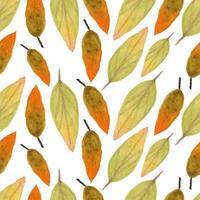 aquarel vallende blad herfst seizoen patroon vector